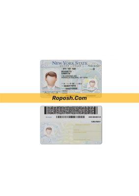فایل لایه باز گواهی رانندگی کشور نیویورک