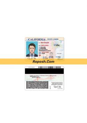 فایل لایه باز گواهی رانندگی کشور کالیفرنیا